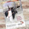 Kleurrijke huisstijl met Scandinavisch tintje voor Moose